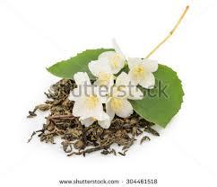 Jasmine Tea Flowers - jasmine tea stock images royalty free images u0026 vectors shutterstock