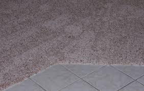 carpet transition carpet edge carpet to carpet transition