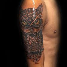 30 celtic owl designs for knot ink ideas