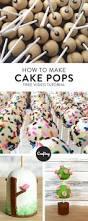 91 best cake pop designs images on pinterest cake ball cake pop