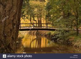 bridge black water rhinefield ornamental drive the new forest