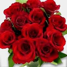 Roses Bouquet Dozen Of World U0027s Best Ecuador Rose Bouquet U2013 Flowers By Sylvia