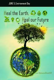 247 best environmentalism images on pinterest mother earth