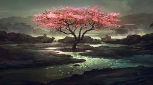 pink tree wallpapers wallpaper cave i and so should