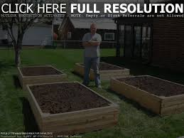 raised bed vegetable gardening for beginners home outdoor decoration