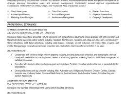 accounts executive resume format example executive resume