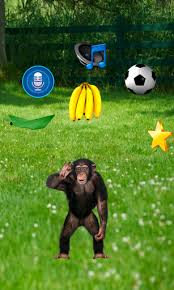 talking ted apk real talking monkey 1 0 apk androidappsapk co