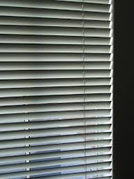 venetian blinds light free backgrounds and textures cr103 com