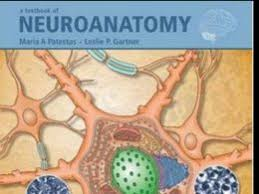 Anatomy And Physiology Made Incredibly Easy Pdf Free Medworld Best Home For Medicos Page 3