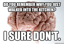 Scumbag Brain Meme - it wouldn t be monday without some monday memes worldwideinterweb