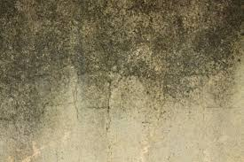 Texture Ideas by Wall Textures Ideas Home Planning Ideas 2017