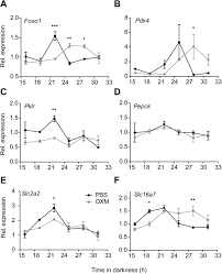 oxyntomodulin regulates resetting of the liver circadian clock by