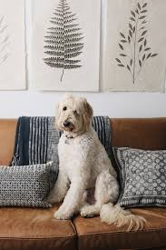Interior Decorating Blogs by The Inspired Room Voted Readers U0027 Favorite Top Decorating Blog