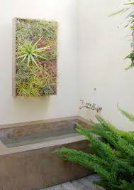 Best Plants For Vertical Garden - best plants that suit your bathroom fresh decor ideas