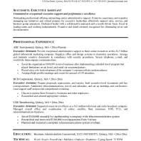 Best Executive Assistant Resume by The Page 2 Of Administrative Assistant Resume Example Vntask Com