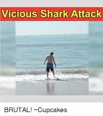 Shark Attack Meme - vicious shark attack brutal cupcakes meme on me me