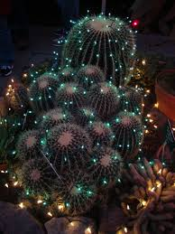 net christmas lights for small bushes danger garden christmas in spokane wa lighting pinterest