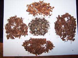 Soil Mix For Container Gardening - al u0027s thread on gardenweb 17 container soils water movement and