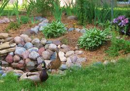 backyard pondthe good thing u2013 about gardening u0026 crafting the
