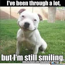 Funny Smile Meme - 75 most funniest smile pictures