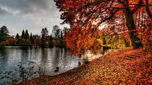 1920x1080 fall wallpaper download wallpaper 1920x1080 autumn park foliage lake full hd