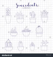 hand drawn succulents cactuses isolated on stock vector 395327980