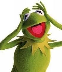 Kermit Meme My Face When - kermit the frog wikipedia