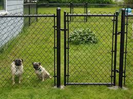 fence ideas for dogs crafts home