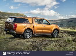nissan gold gold orange nissan navara np300 pickup truck stock photo royalty