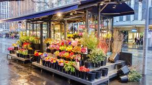 flower shop free stock photos of flower shop pexels