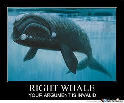 Whale Meme - right whale by kaladriel meme center