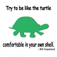 The Quot Be Like Bill - try to be like the turtle quote picture
