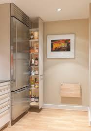 small kitchen pantry ideas u2013 laptoptablets us
