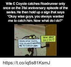 Wile E Coyote Meme - wile e coyote catches roadrunner only once on the 31st anniversary