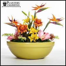 low bowl planter garden ideas photograph large resin plant