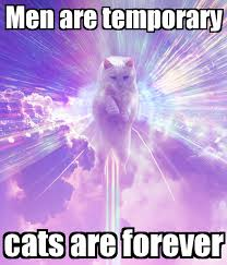 Keep Calm Know Your Meme - men are temporary cats are forever poster afit keep calm o matic