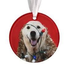 naughty dog ornaments u0026 keepsake ornaments zazzle