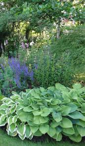 raised bed garden plants dunneiv org
