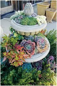 Arizona Backyard Ideas Backyards Bright 25 Best Arizona Backyard Ideas On Pinterest