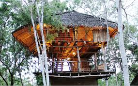 Treehouse Living Is The Treehouse The Of Sustainable Living Cnn Style
