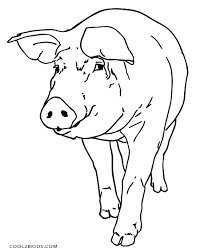 coloring pages guinea pigs pictures of baby big bad wolf and the