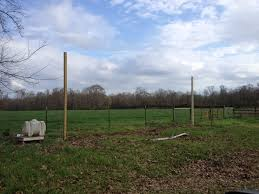 east happyland homebrew garden louisiana gardening hops grains