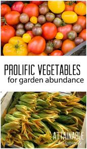 Growing Your Own Vegetable Garden by 6081 Best Vegetable Garden Inspiration U0026 Tips Images On