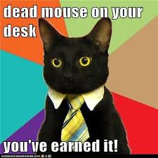 Desk Meme - dead mouse on your desk you ve earned it cheezburger funny