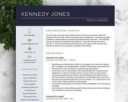Template For A Professional Resume Professional Resume Templates Cv Templates By Landeddesignstudio