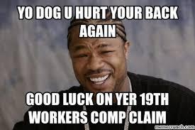 Yo Dog Meme - dog u hurt your back again