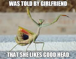 Mantis Meme - mantis meme imgflip