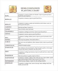 herb growing chart companion planting chart 9 free excel pdf documents download