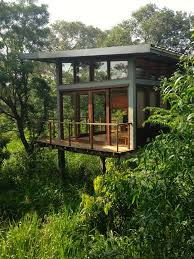 best 25 jungle house ideas on pinterest fun house h and and