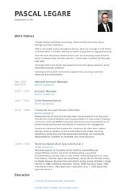 Visual Resume Examples Account Manager Resume Examples Resume Example And Free Resume Maker